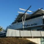 The Swainson/Woods Digitisation Project at Puke Ariki