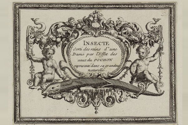 Advertisement Showing a Parasitic Worm Extracted through the Effects of the Waters of Pouhon